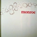 brendan-monroe-book-2
