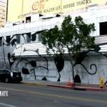 Viva-La-Revolucion-San-Diego-Mcgee-4