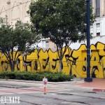Viva-La-Revolucion-San-Diego-Museum-mcgee-3